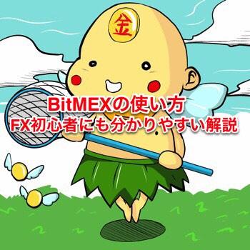 BitMEXの使い方 FX初心者にも分かりやすい解説 ポイン